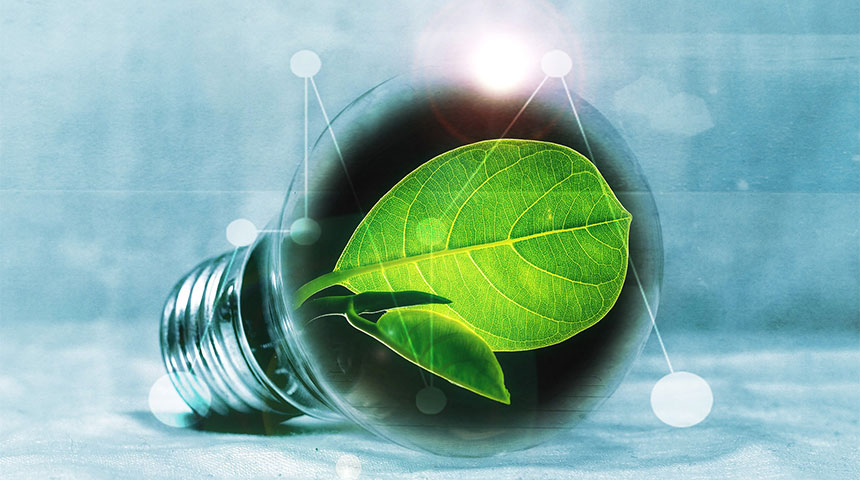 bulb with leaf - Our Top 4 Tips for Sustainable Construction Projects
